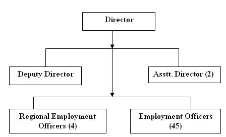 Org. Structure